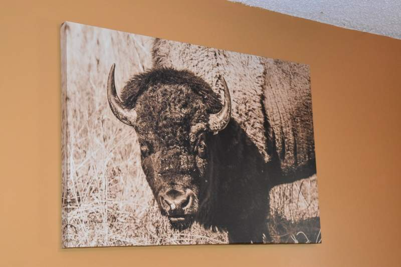 Butler has turned some of his favorite photos into large display works, like this buffalo from a photo trip to Land Between the Lakes in Kentucky.
