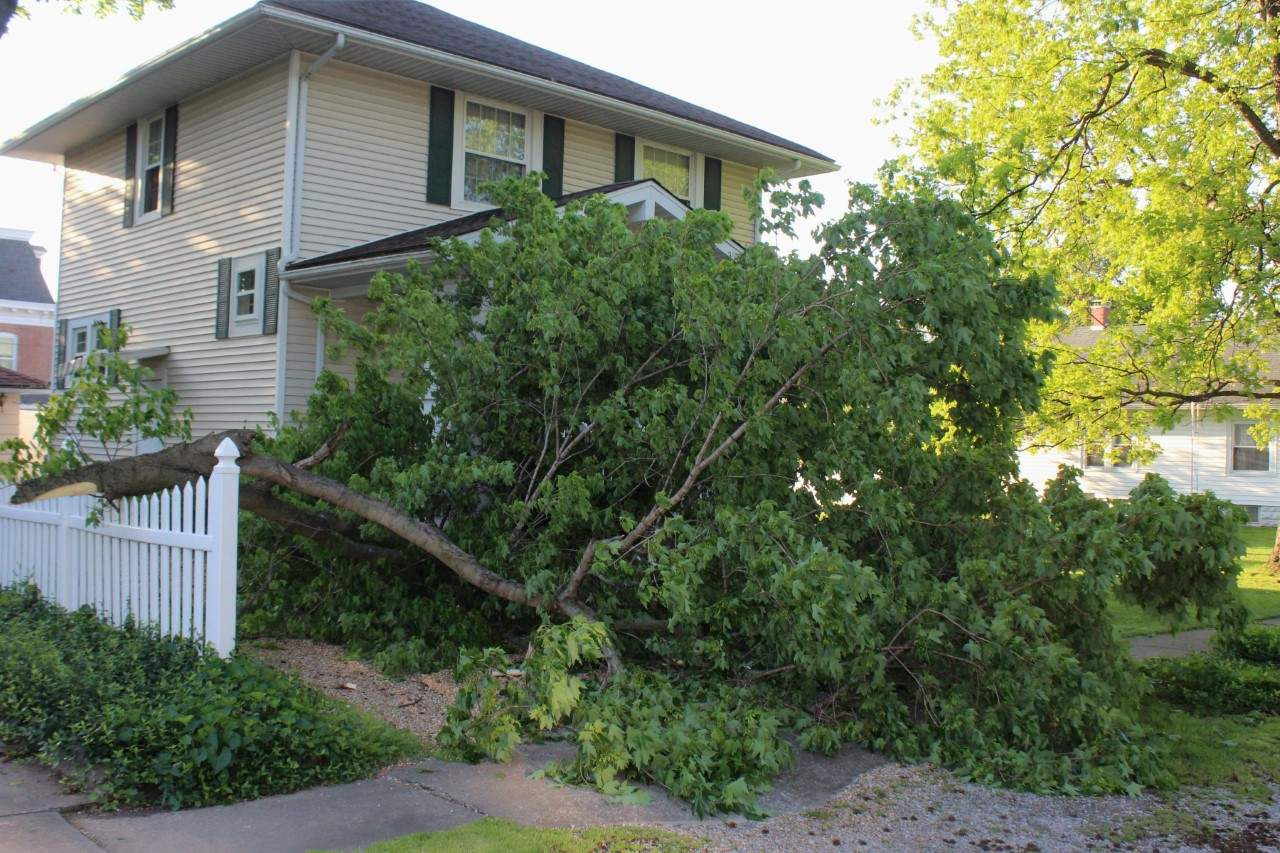 Flooding damage exists across Perry County, and recent thunderstorms and high winds have brought other kinds of damage. This Pinckneyville home narrowly evaded more serious damage from this felled tree.