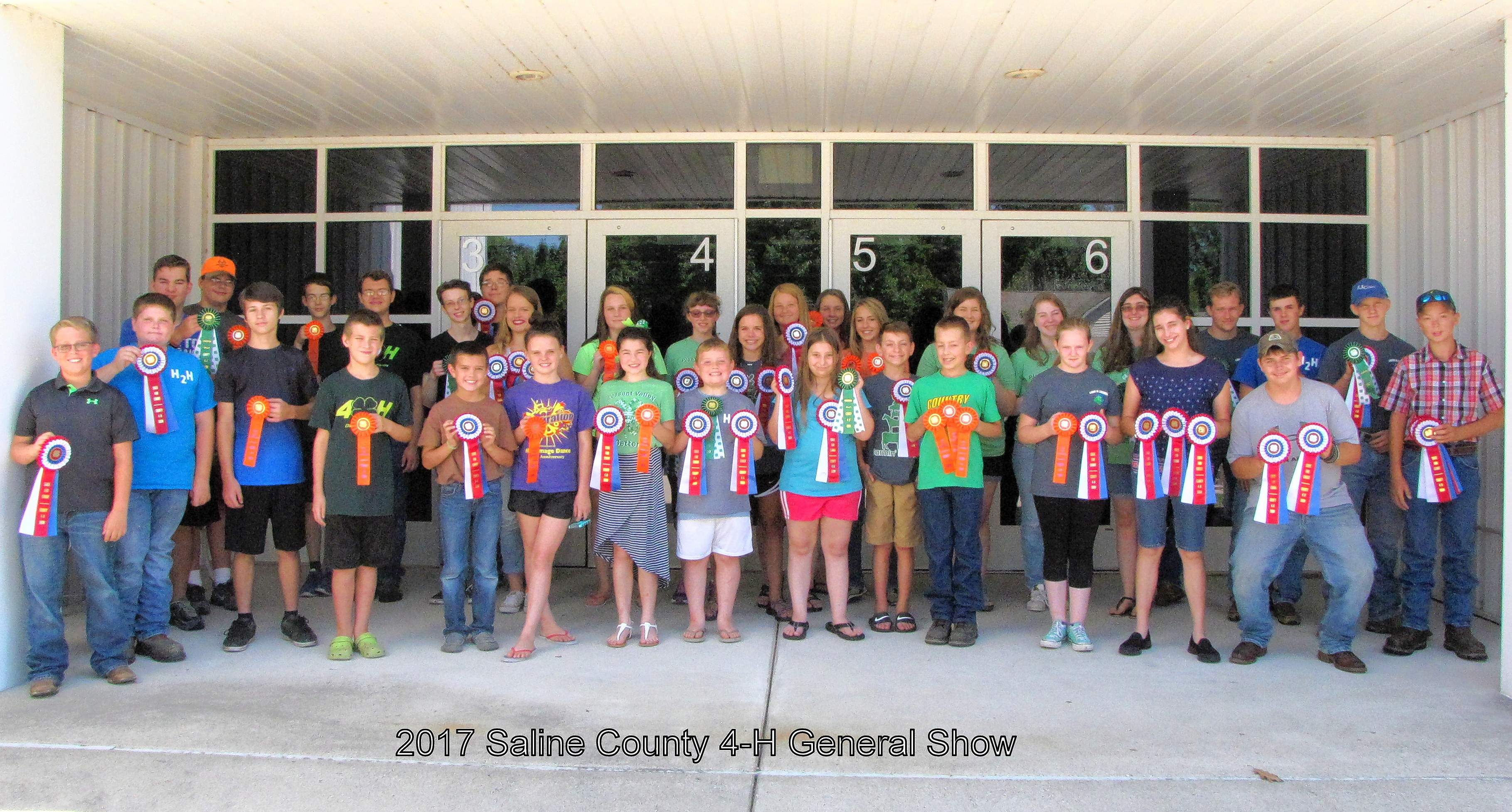 State fair, state fair alternate, and county champion ribbon winners are pictured at the Saline County 4-H General Show.