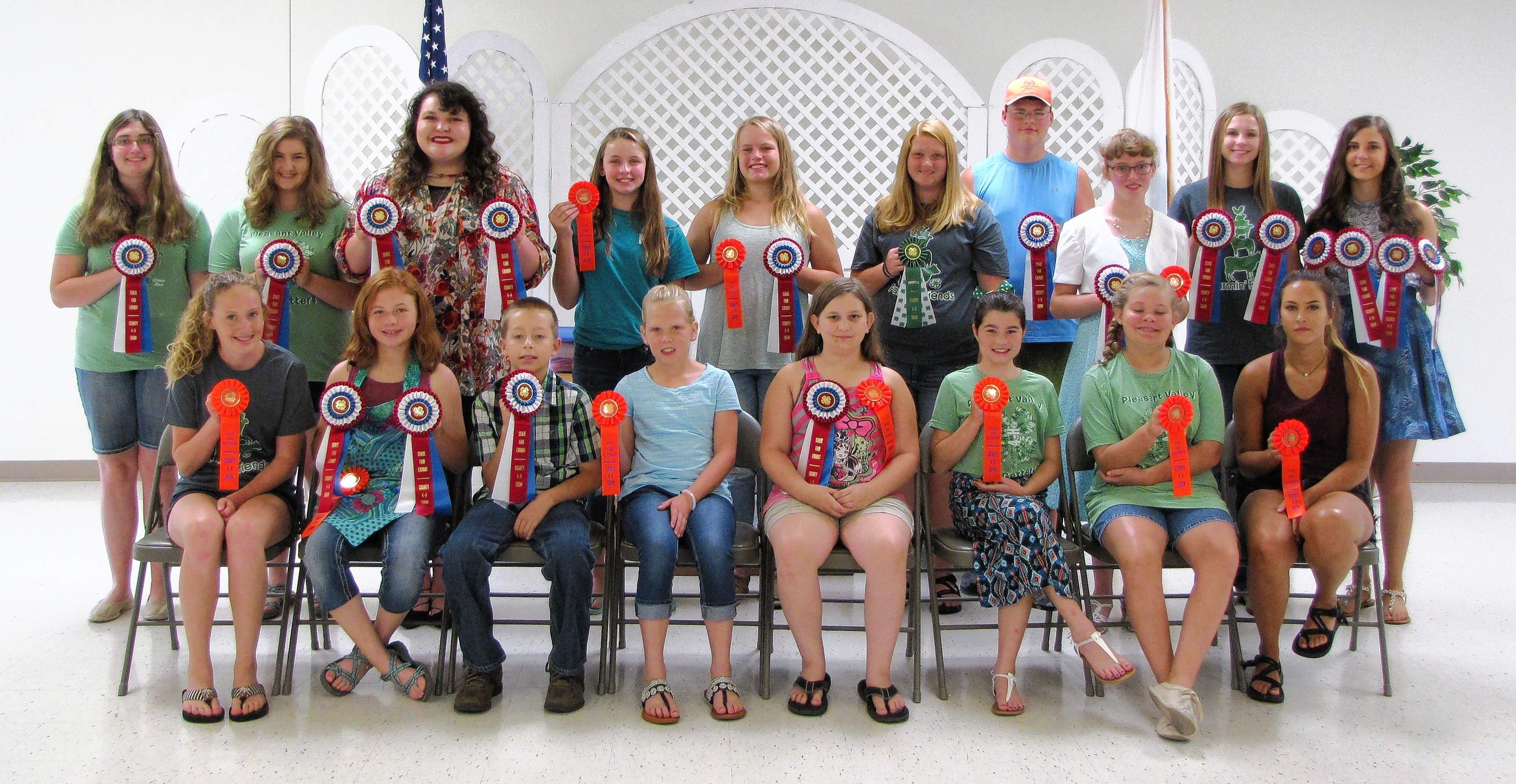 State fair, state fair alternate and county champion ribbon winners are pictured at the Saline County 4-H Home and Family Show. Exhibitors excelled with their foods, STEAM (Science, Technology, Engineering, Arts and Math) clothing, shopping in style, interior design, child development, candy making and food decorating projects.