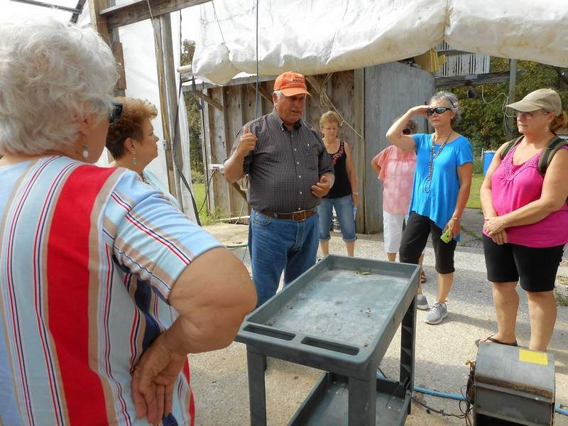 Grover Webb from Tanglefoot Ranch describes plant care in one of the high tunnels to Marion Garden Club members.