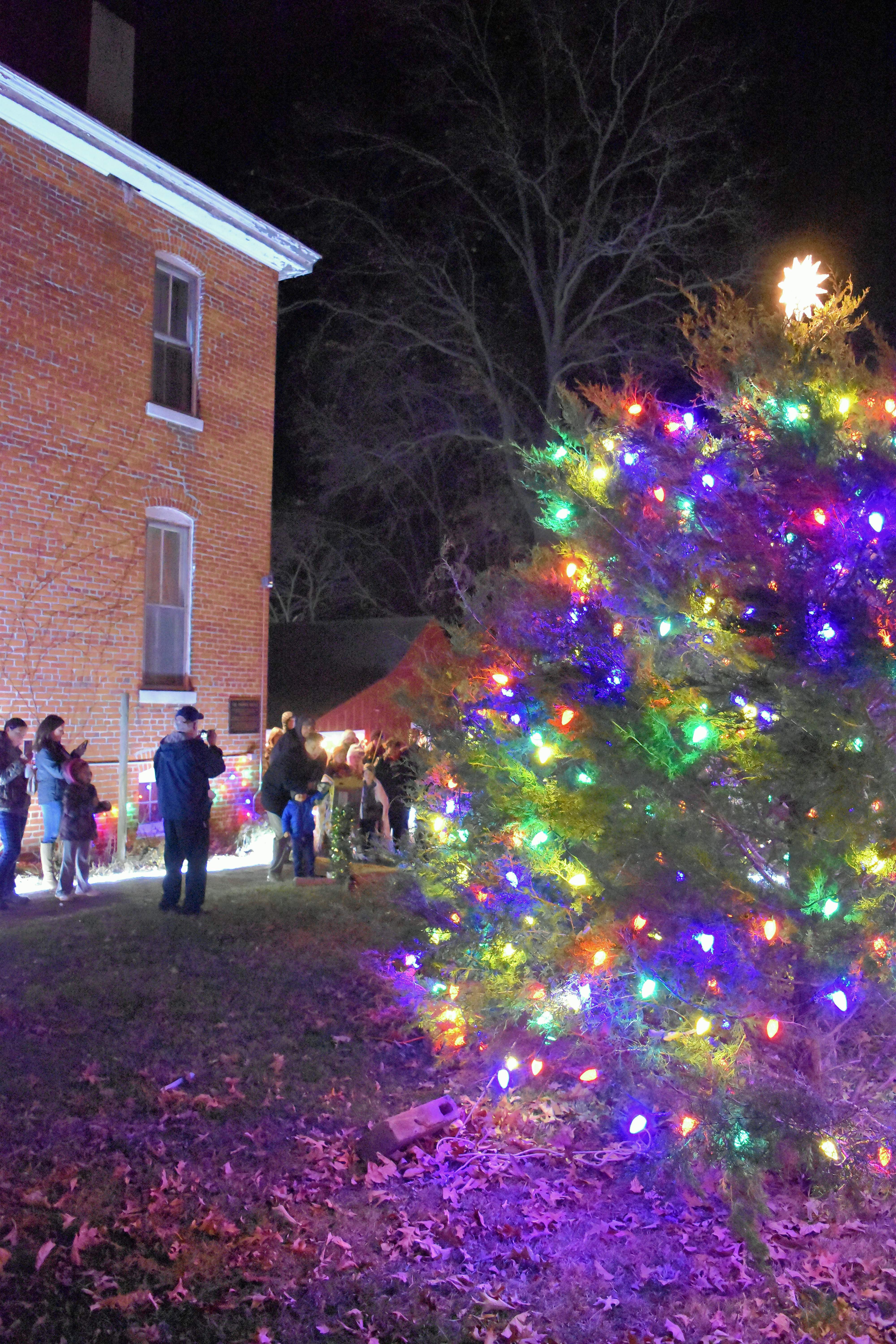 Lights cascade on the Saline Creek Pioneer Village and Museum grounds as Harrisburg Mayor John McPeek lights the city's Christmas tree Tuesday night.