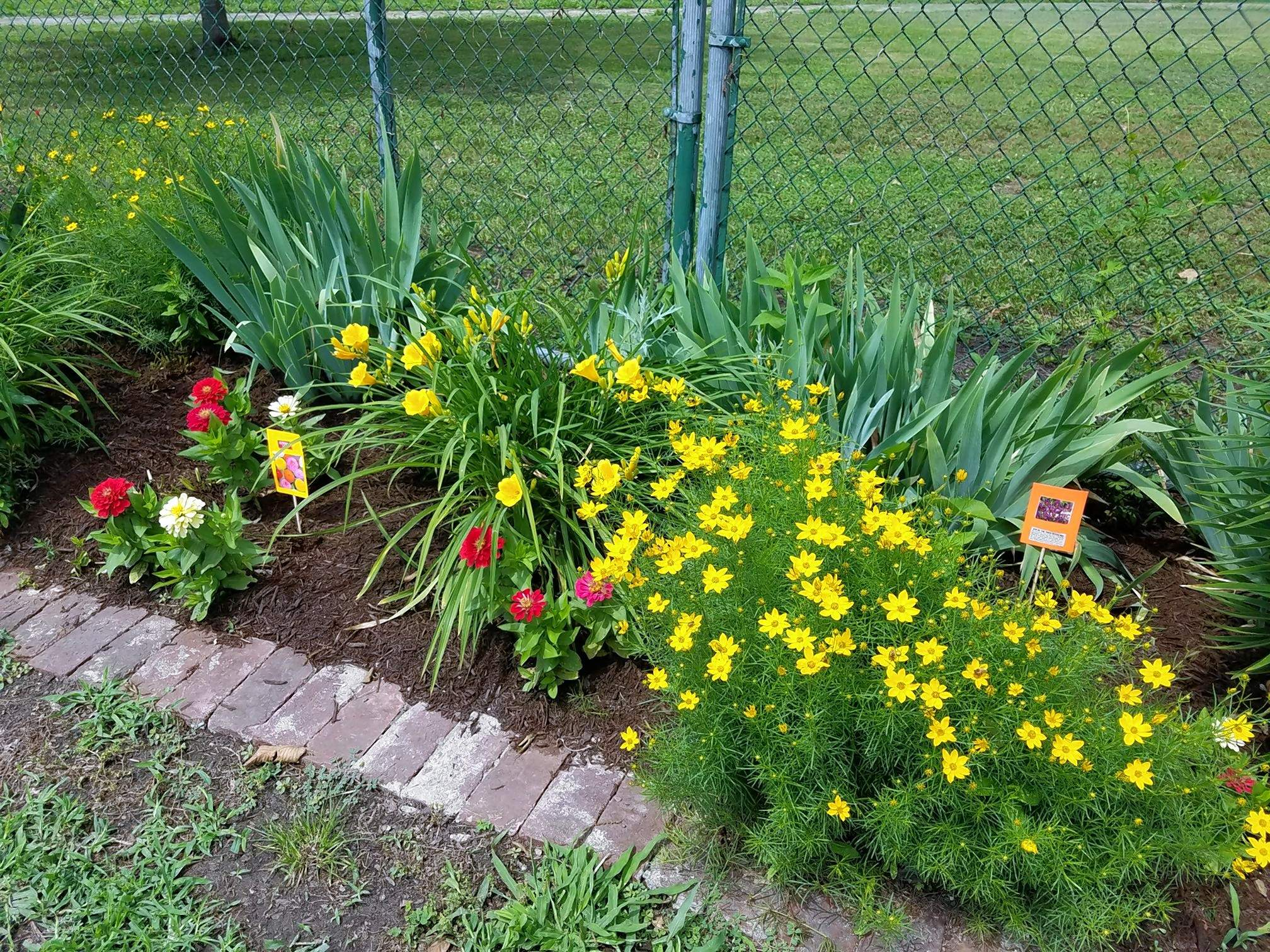 Some of the fine flowers and plants on display on North Division Street, courtesy of the Du Quoin Garden Club.