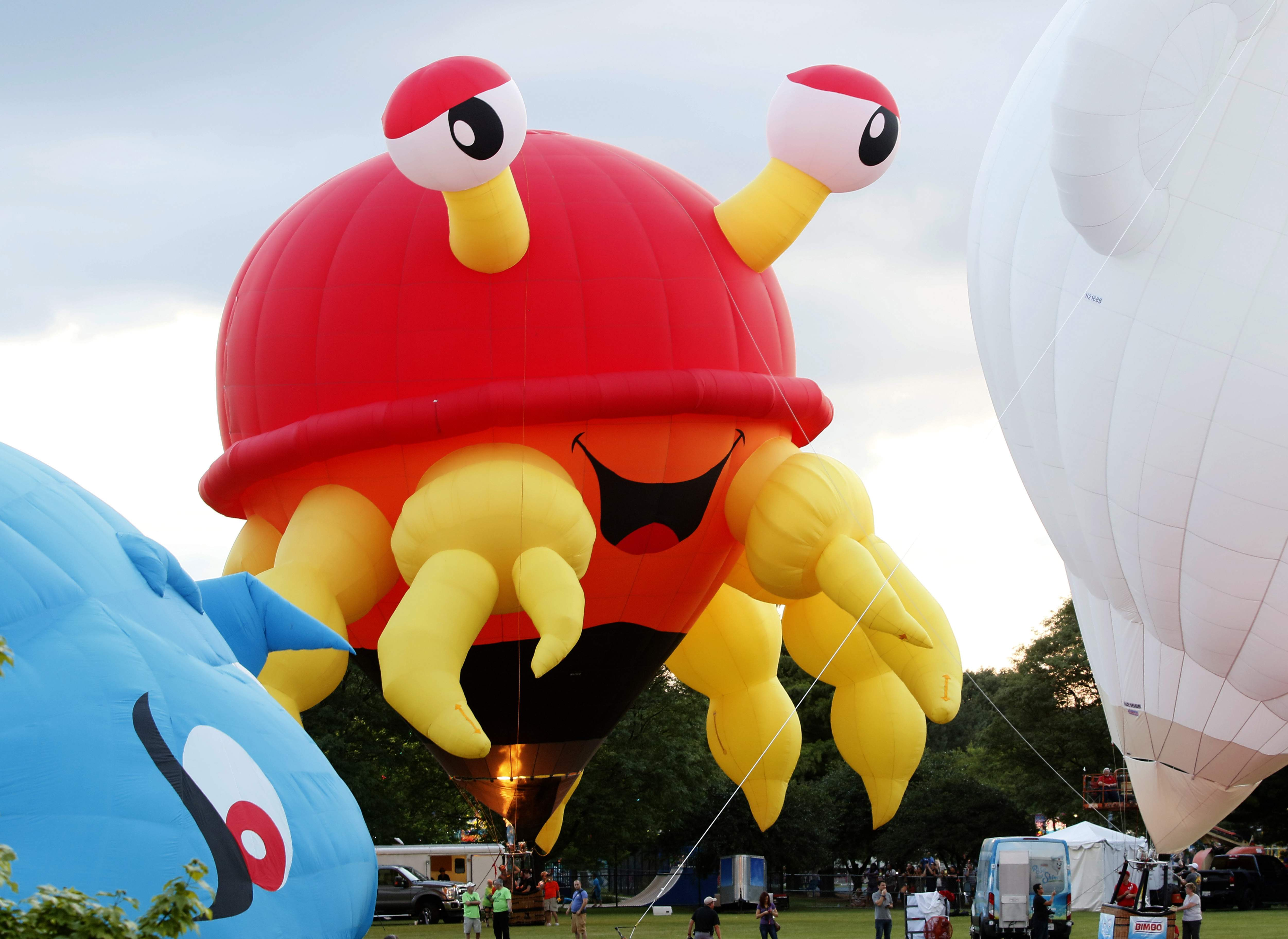 Roughly two dozen balloons of nearly every size and shape are the stars of the show at Lisle's Eyes to the Skies Festival.