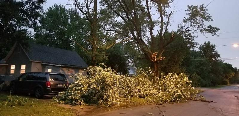 A power line and tree were blown on Sara Hawkin's car  on Linden Street in Du Quoin.