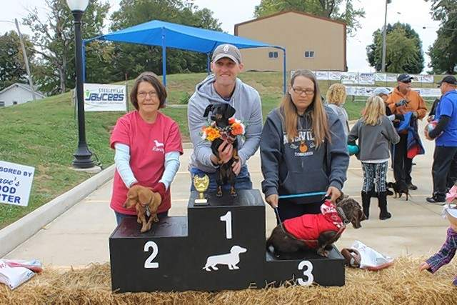 Winners of the first Dachshund Derby competition are, from left, Sadee, owned by Ora Jackson, took second place; Ernie, owned by Jeff, Emma and Reese Mulholland, was first; and Dottie, owned by Denise Pankey, placed third.