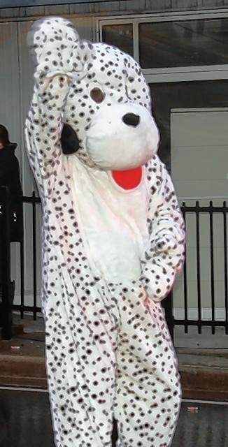 A Dalmatian waves to the crowd at the parade.