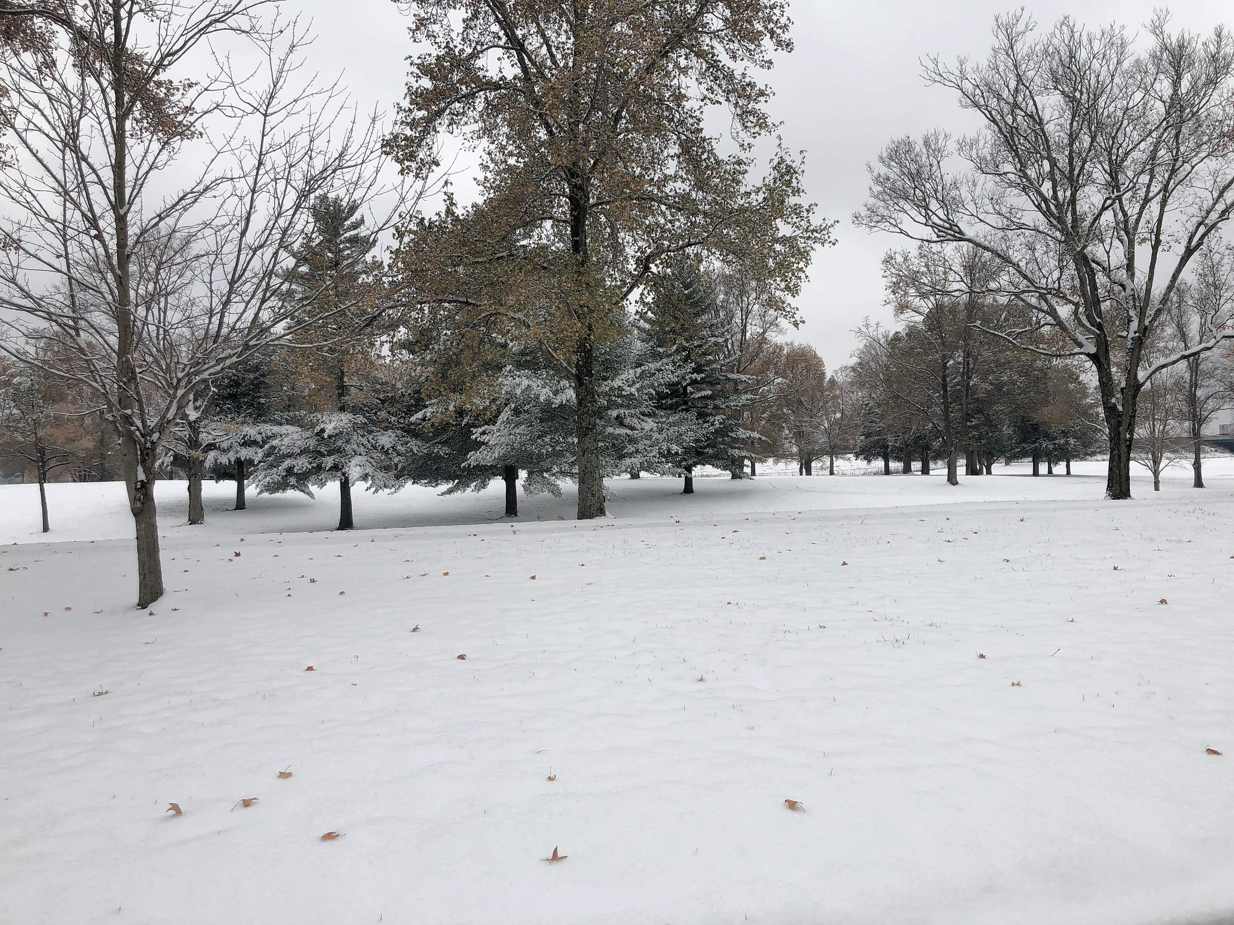 The early season snowfall made a picturesque scene on the grounds of the Marion Veterans Administration Medical Center.