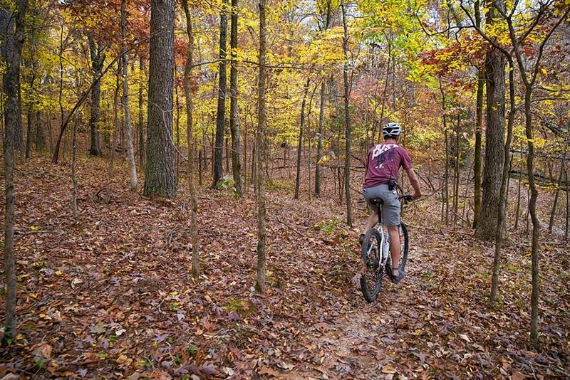 Isaiah Tanner explores the new Multi-Use Trail System under construction at SIU's Touch of Nature Environmental Center.