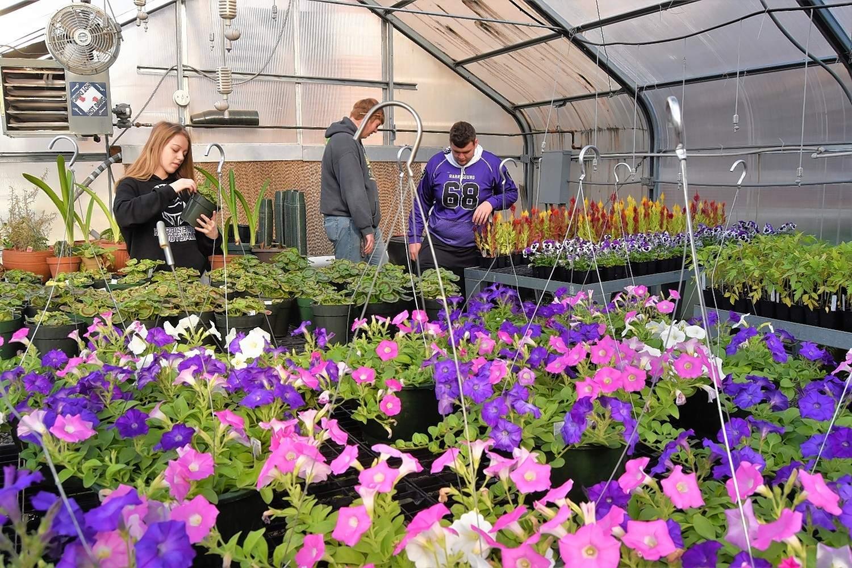 Jazlyn Lewis, left, examines a plant inside the Harrisburg High School FFA greenhouse.