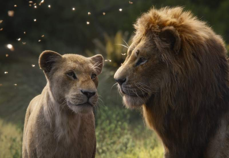 Nala (voiced by Beyoncé Knowles) and Simba (voiced by Donald Glover) discuss their future in 'The Lion King.'
