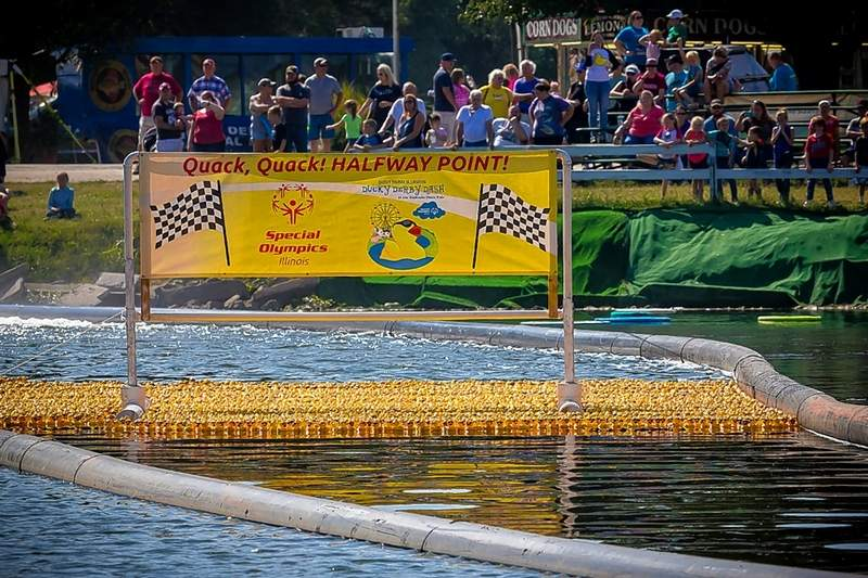 The Duck Derby Dash reaches the midway point of the race Sunday with fans working themselves into a frenzy.