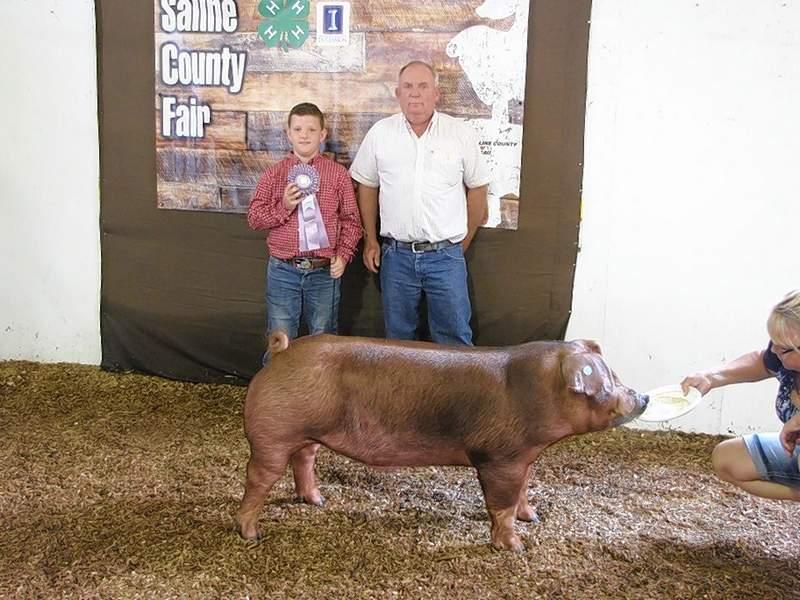 PHOTO COURTESY OF NANCY LAMBERT2019 4-H Purebred Market Swine Reserve Champion, Cayden Baird.