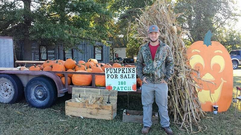 TRAVIS DENEAL PHOTOCaleb Boulds of Eldorado stands next to his pumpkin display.